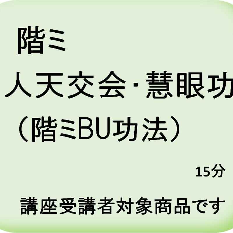 人天交会・慧眼功(階ミ観訣)
