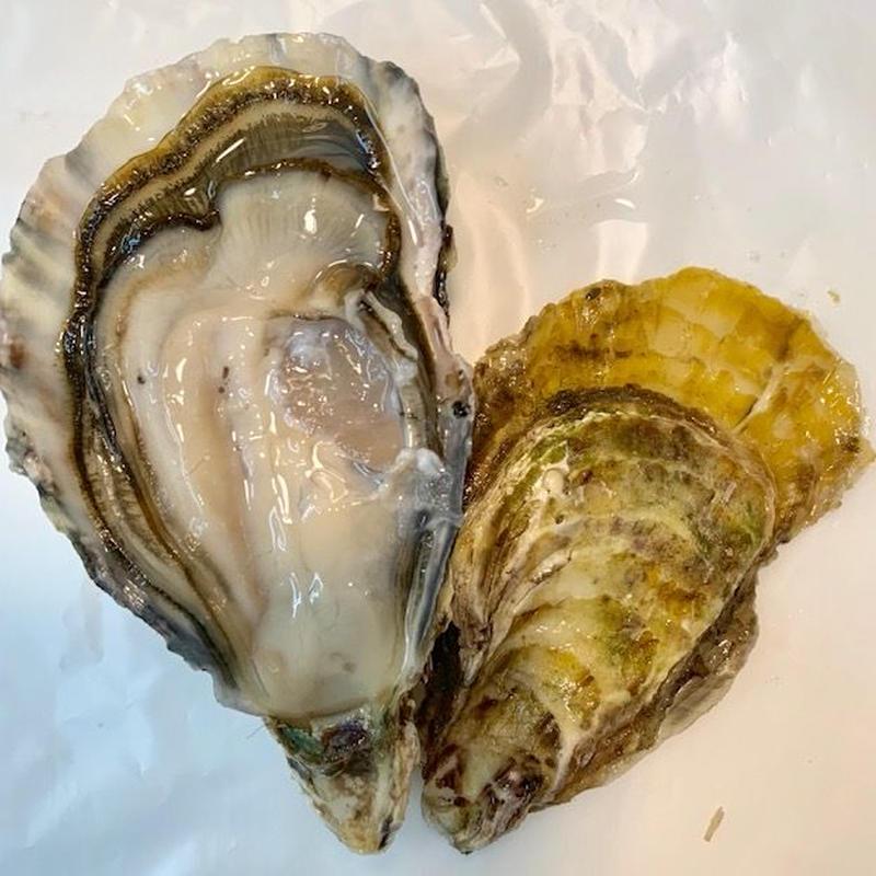 五島列島プレミアム牡蠣