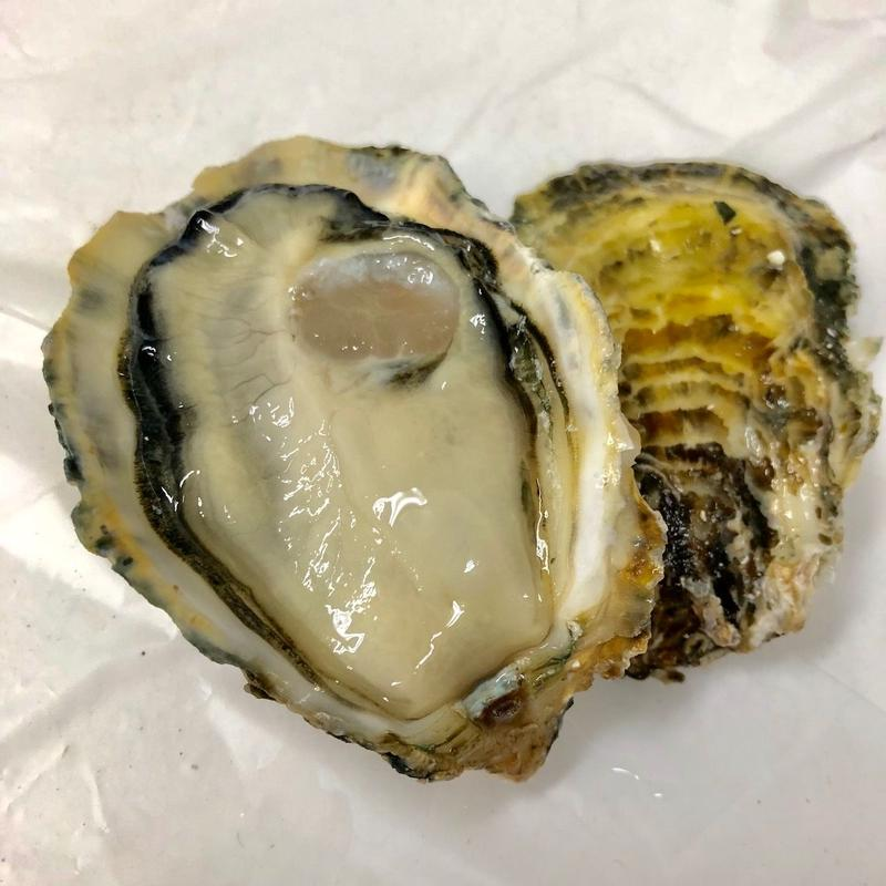 小長井牡蠣(長崎)