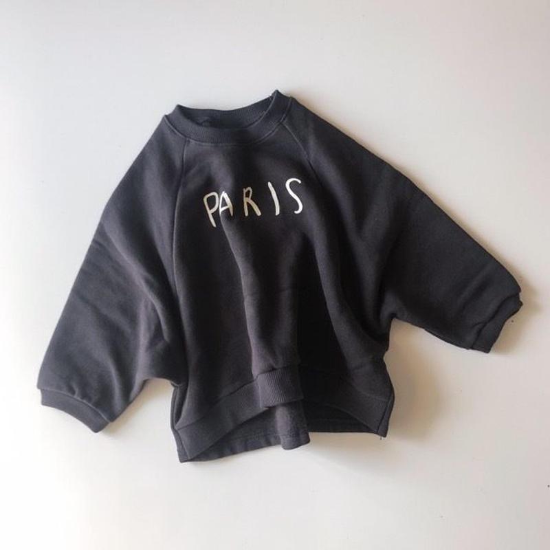 PARIS swet