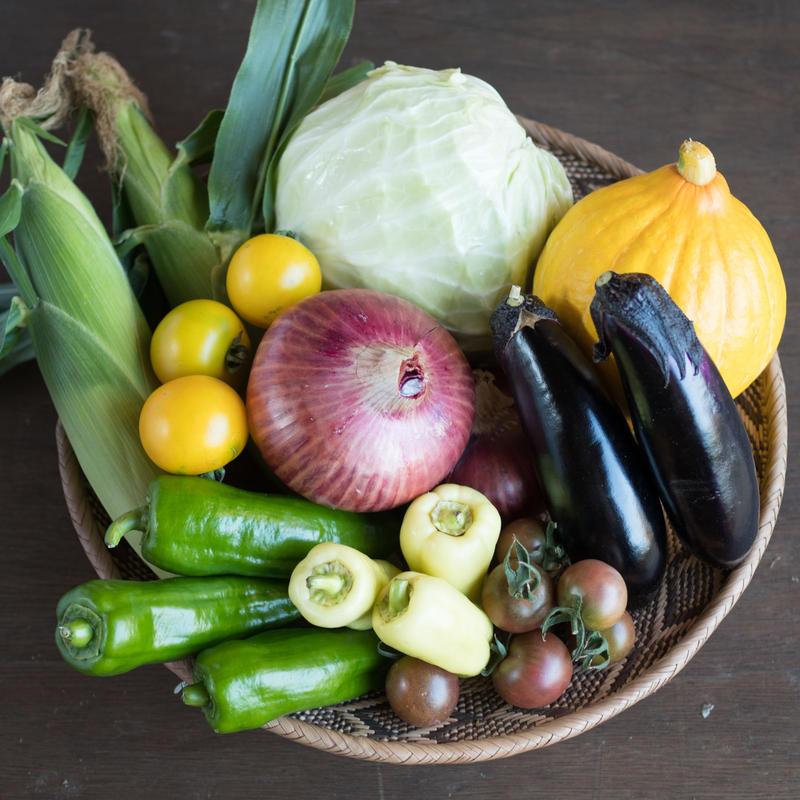HOMEMAKERS 夏野菜セット