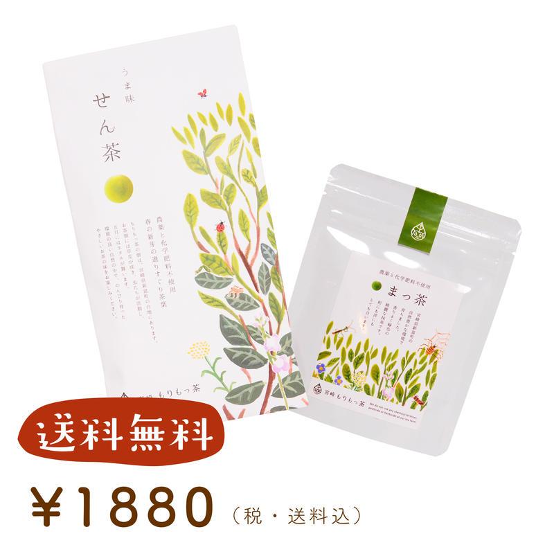 【送料無料】もりもっ茶入門セットA(せん茶+まっ茶)