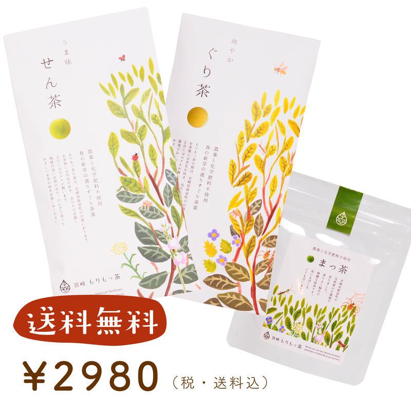 【送料無料】もりもっ茶 入門セットB(せん茶+ぐり茶+まっ茶)