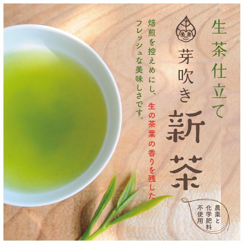 「芽吹き 新茶(50g)」フレッシュな生茶仕立て
