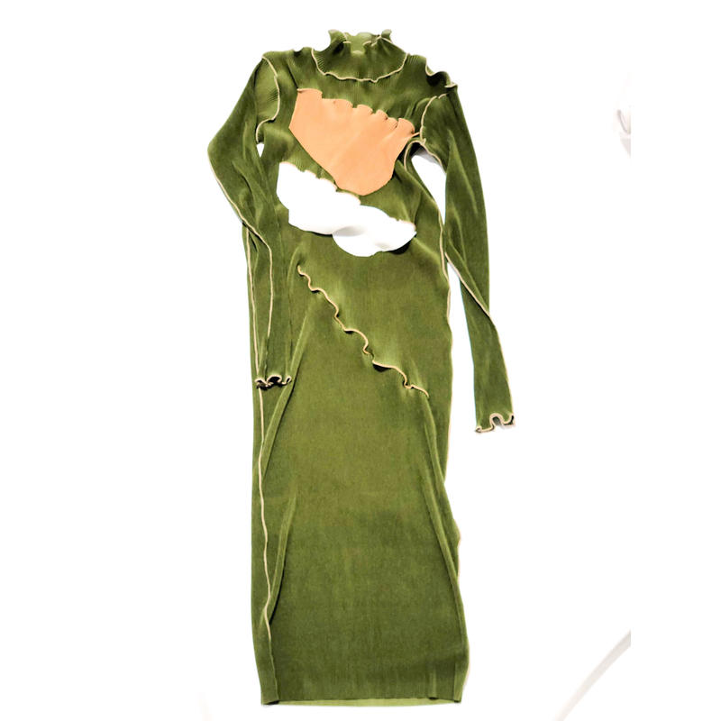 kotohayokozawa  / pleats dress long sleeve high neck   / TDKT-PD06