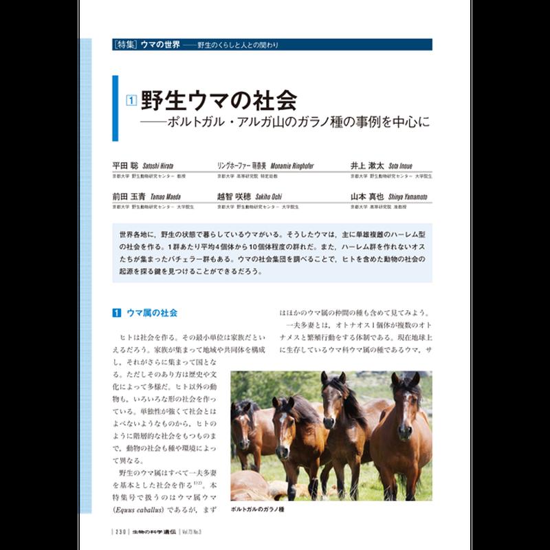 2019年5月発行号/特集/平田 聡 氏