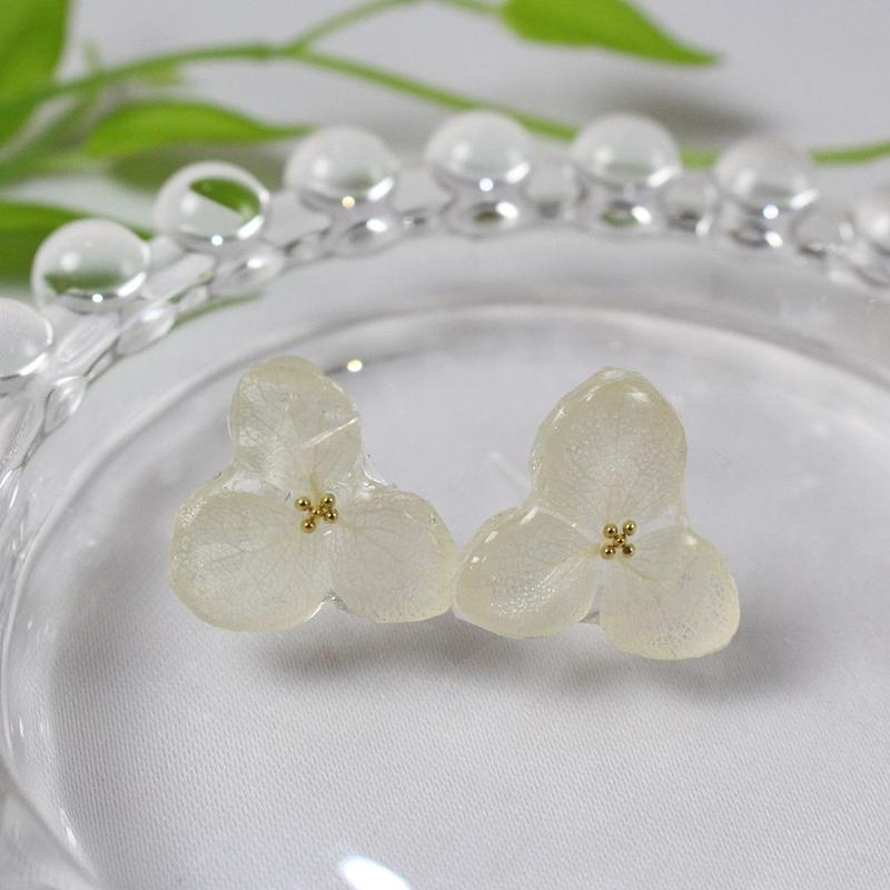 紫陽花のドライフラワーピアス(白)