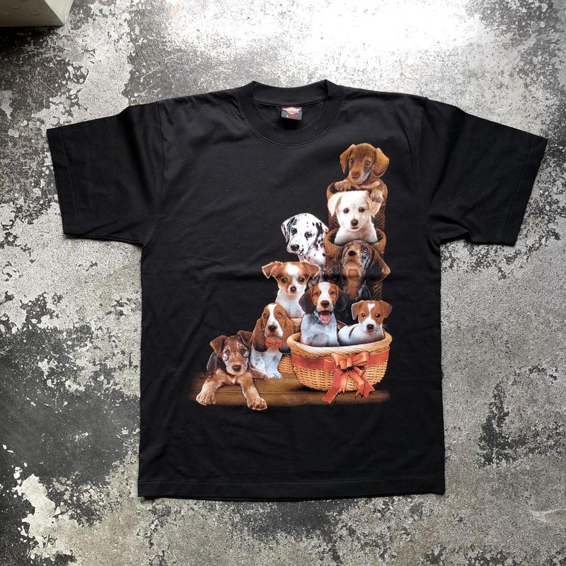 used DOG T