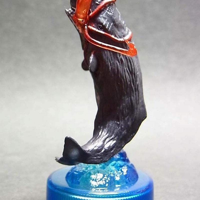 SE.マッコウクジラ/シークレット