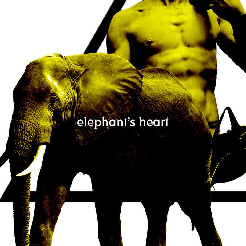 Eye'Dee 2019第一弾アルバム「elephant's heart」初回盤