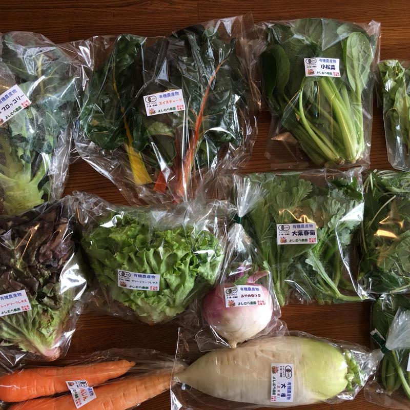 有機野菜セット レギュラーコース