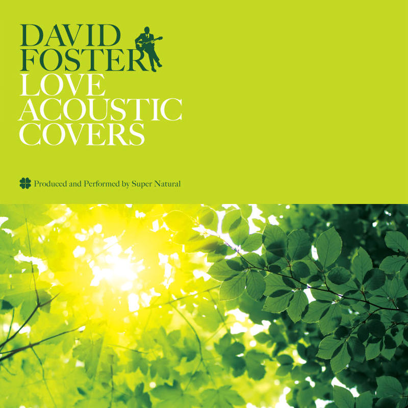 DAVID FOSTER LOVE ACOUSTIC