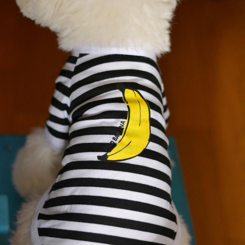 バナナプリント半袖ボーダーTシャツ (黒)