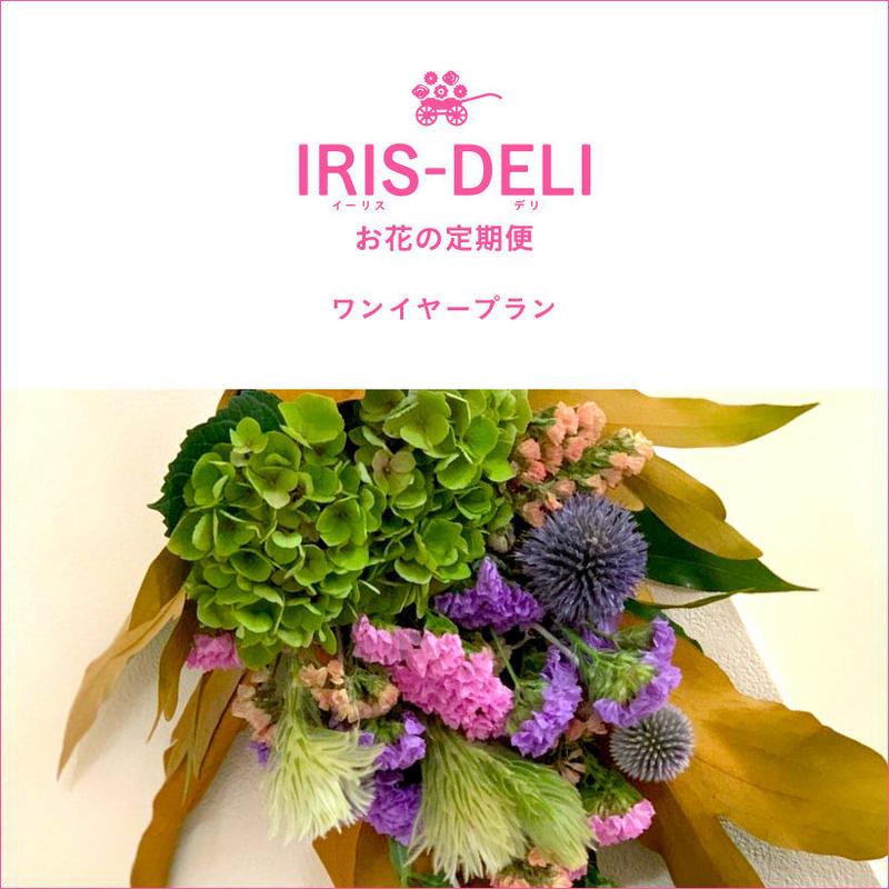 お花の定期便 IRIS-DELI(ワンイヤープラン)