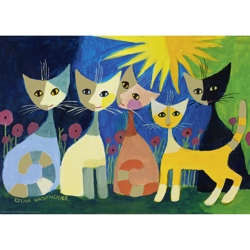 29772  Rosina Wachtmeister : Colourful Company