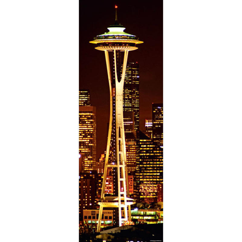 29553  Sights : Space Needle