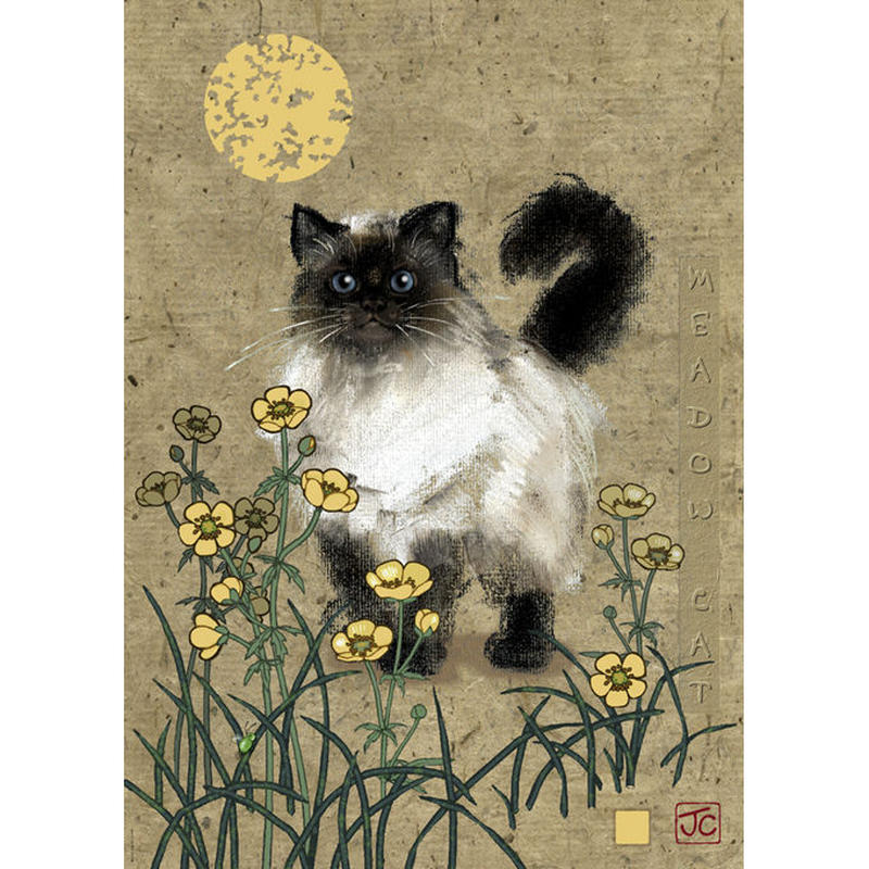 29718  Jane Crowther : Meadow Cat