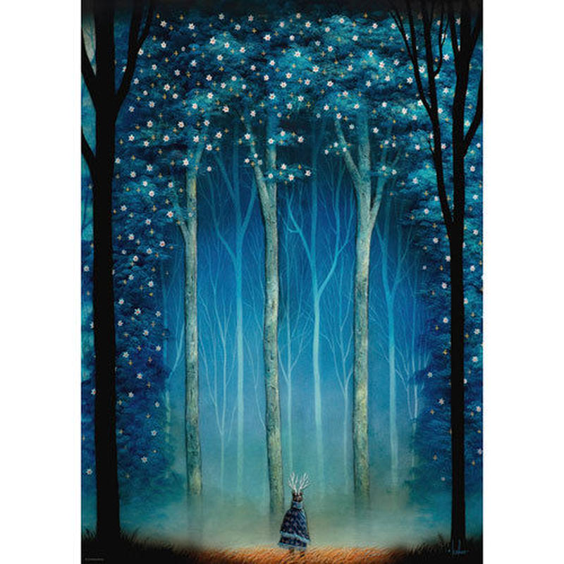 29881  Andy Kehoe : Forest Cathedral