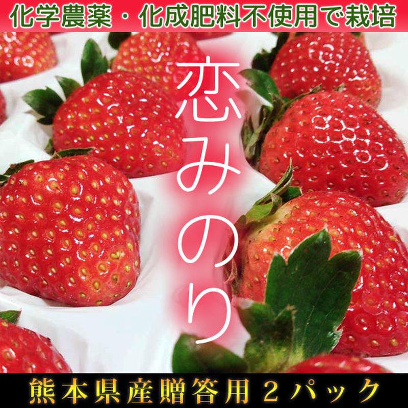 有機イチゴ贈答用2パック入り 恋みのり 熊本県産