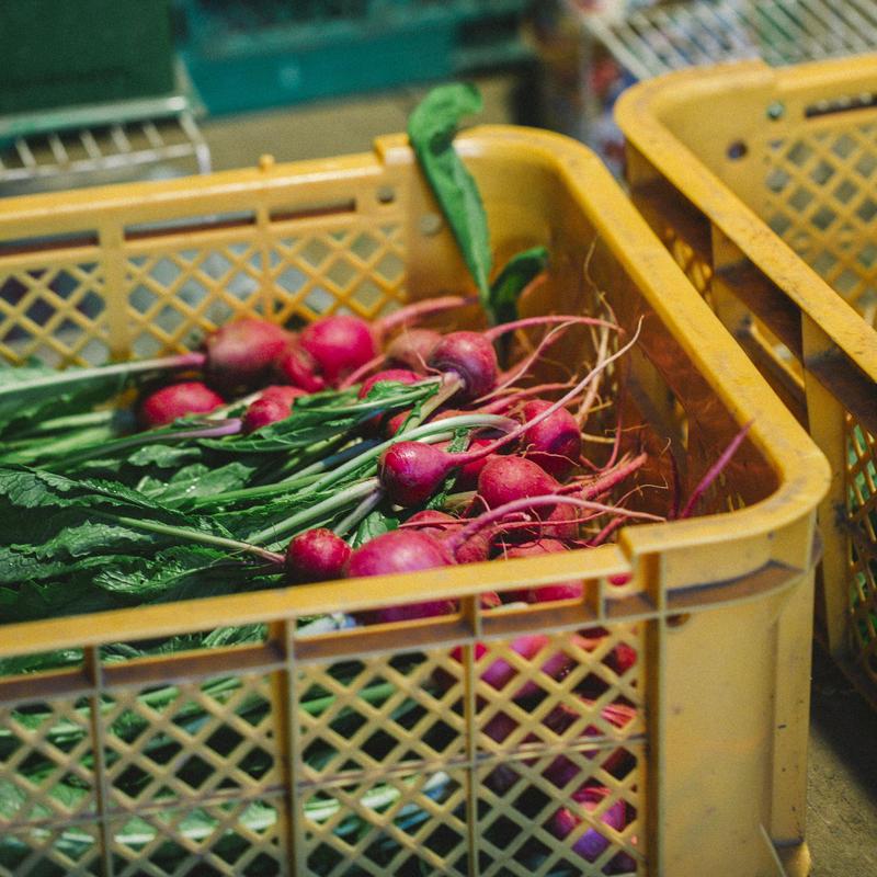 八風農園の野菜セット通販 / 山「Yama-BOX」