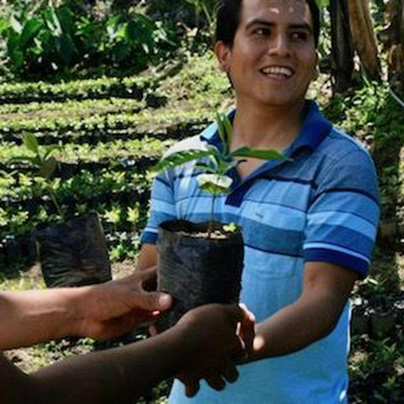 ペルー フェスパ農園 ウィルダーガルシア  [やや深炒り]