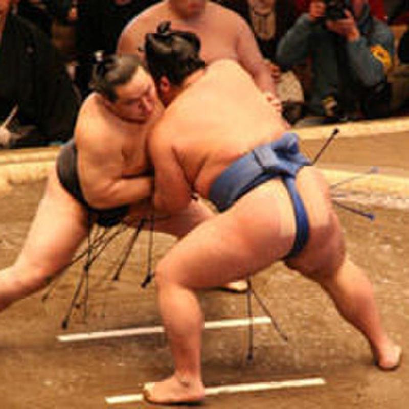 一起来看相扑练习吧!