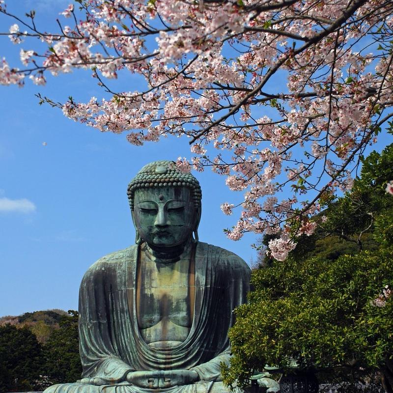 Kamakura sightseeing & Strawberry picking