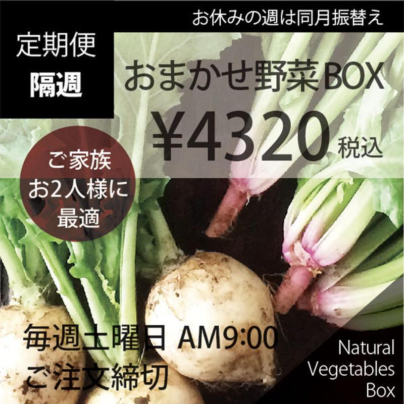 (隔週)おまかせ野菜BOX - Mサイズ