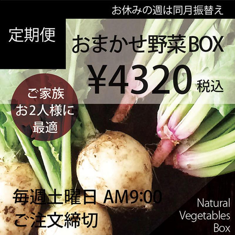 【定期便】おまかせ野菜BOX-Mサイズ
