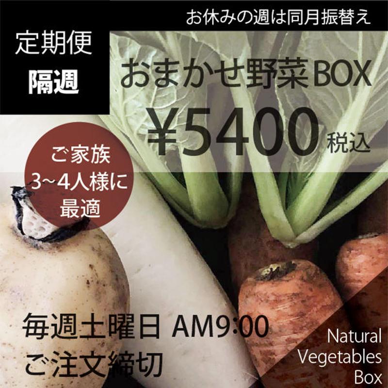 (隔週)おまかせ野菜BOX - Lサイズ