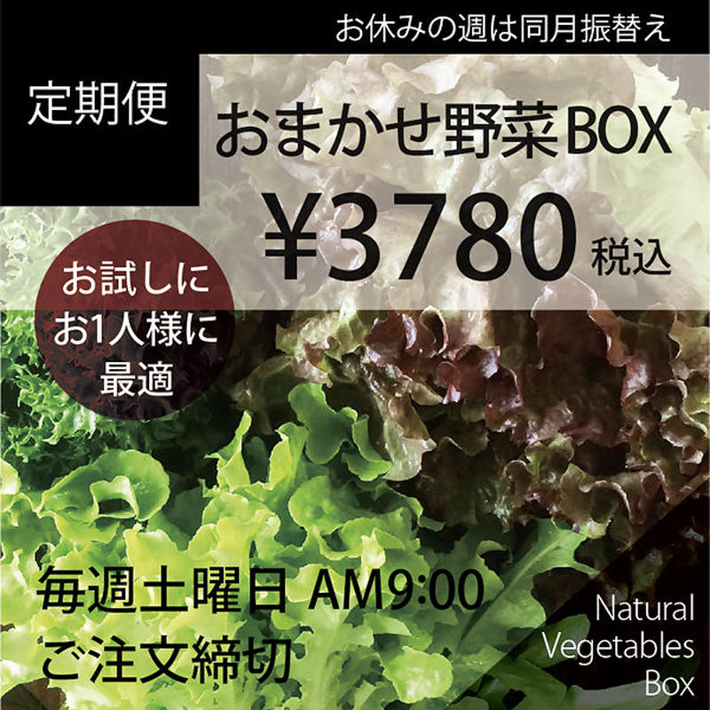 【定期便】おまかせ野菜BOX-Sサイズ