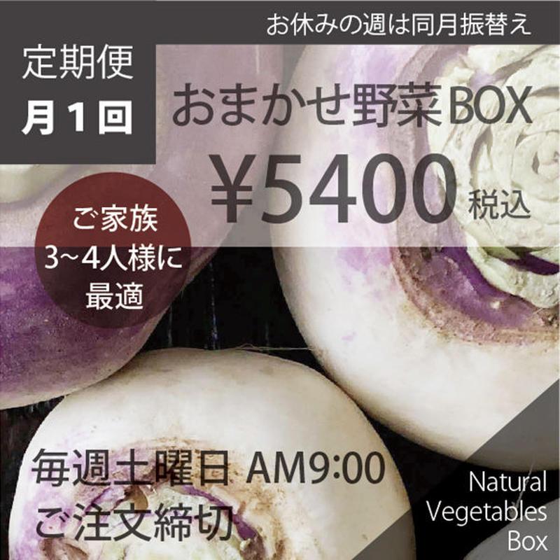 (月1回)おまかせ野菜BOX - Lサイズ