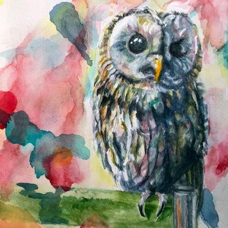"水彩 『梟』 ""owl"""