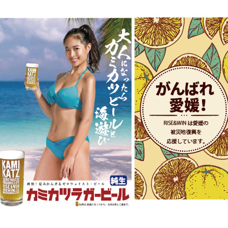 【限定】カミカツラガー 河内晩柑ver.(330mlボトル×3本セット)