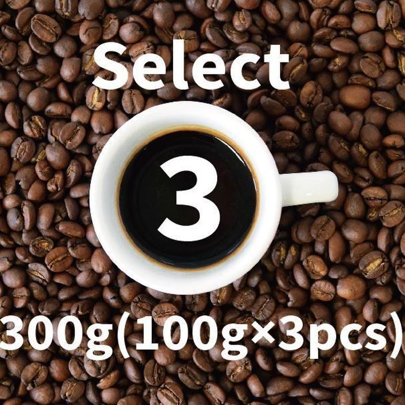 Web限定【300g】Select 3 Coffee セレクトスリー・コーヒー (100g×3個) 個性の異なる3種類のおすすめコーヒーをセレクト 合計300gをセット価格にて提供