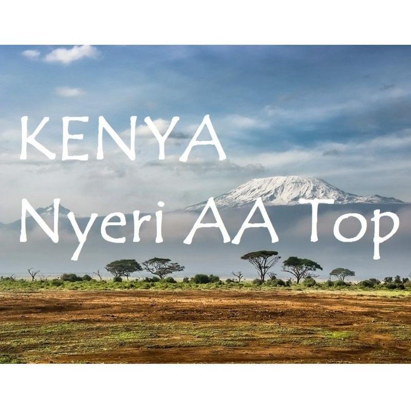 【100g】ケニア ニエリ AAトップ カルティ(中煎り)