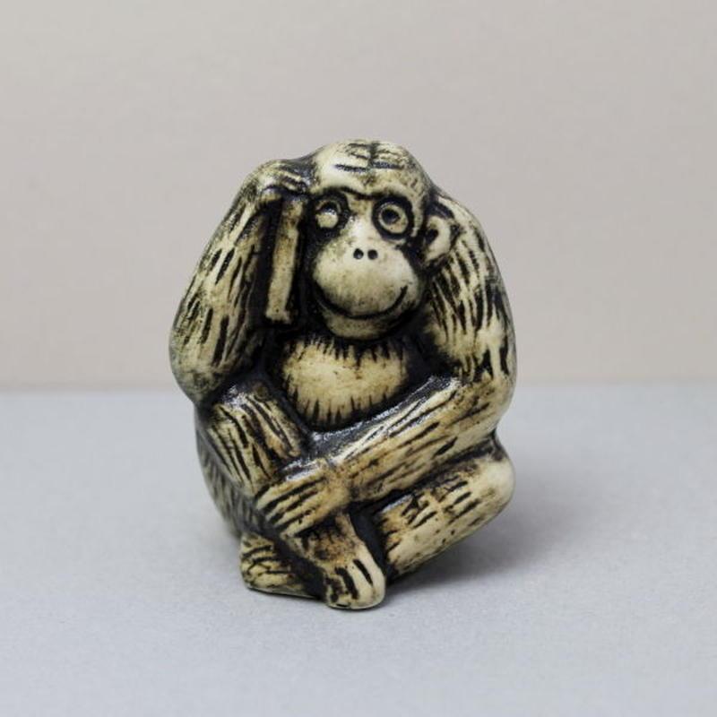Monkey  / さる