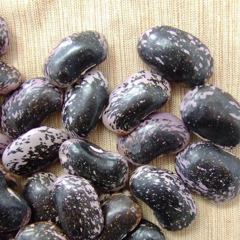 花豆できました(*^。^*)29年産!!片品特産紫花豆!!ほっこり煮える 300g
