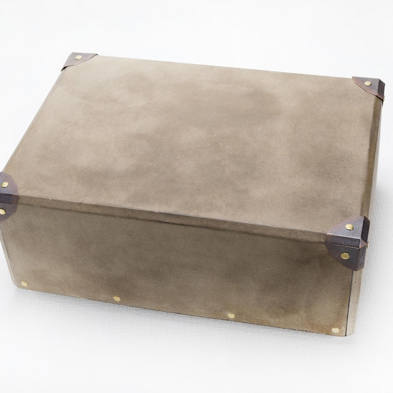CARRY   CONTAINER   COURI   4