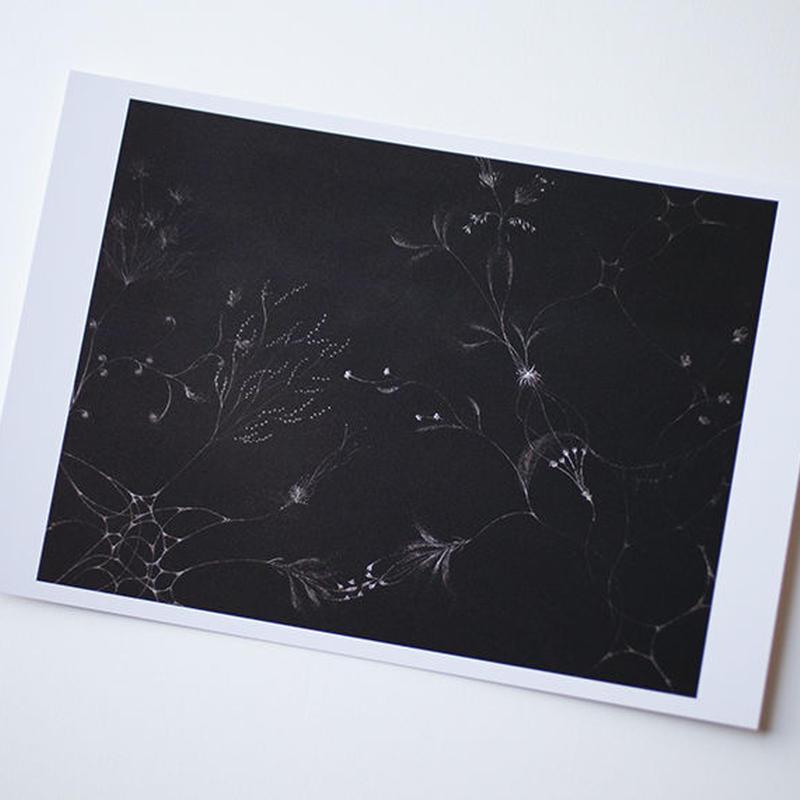 """ポストカード """"garden2 detail"""""""