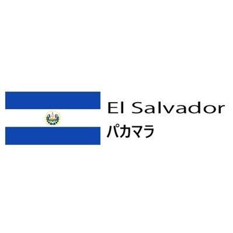 (生豆) El Salvador パカマラ 300g