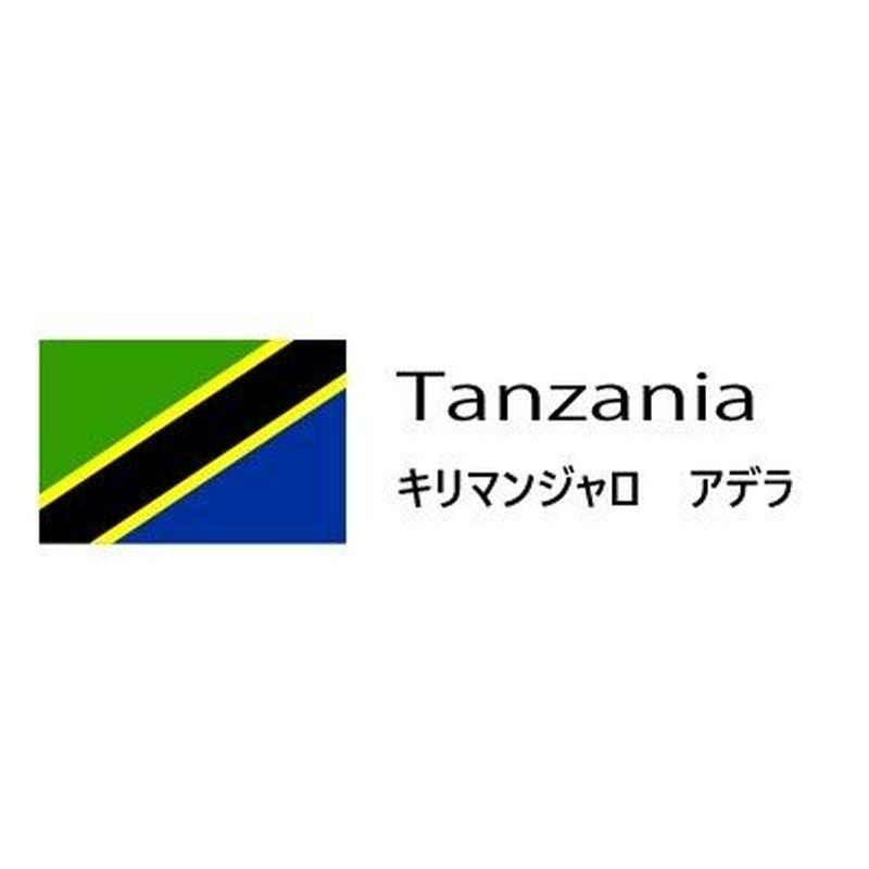 (生豆)Tanzania キリマンジャロ アデラ 300g