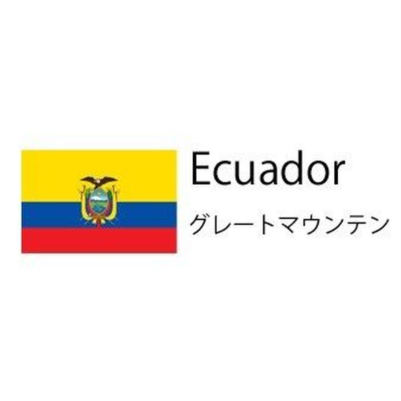 (生豆) Ecuador グレートマウンテン 300g