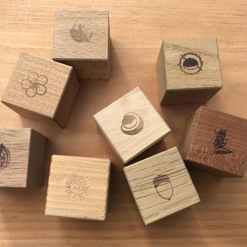 もりのめぐみ「四角い積み木」木の実8個セット