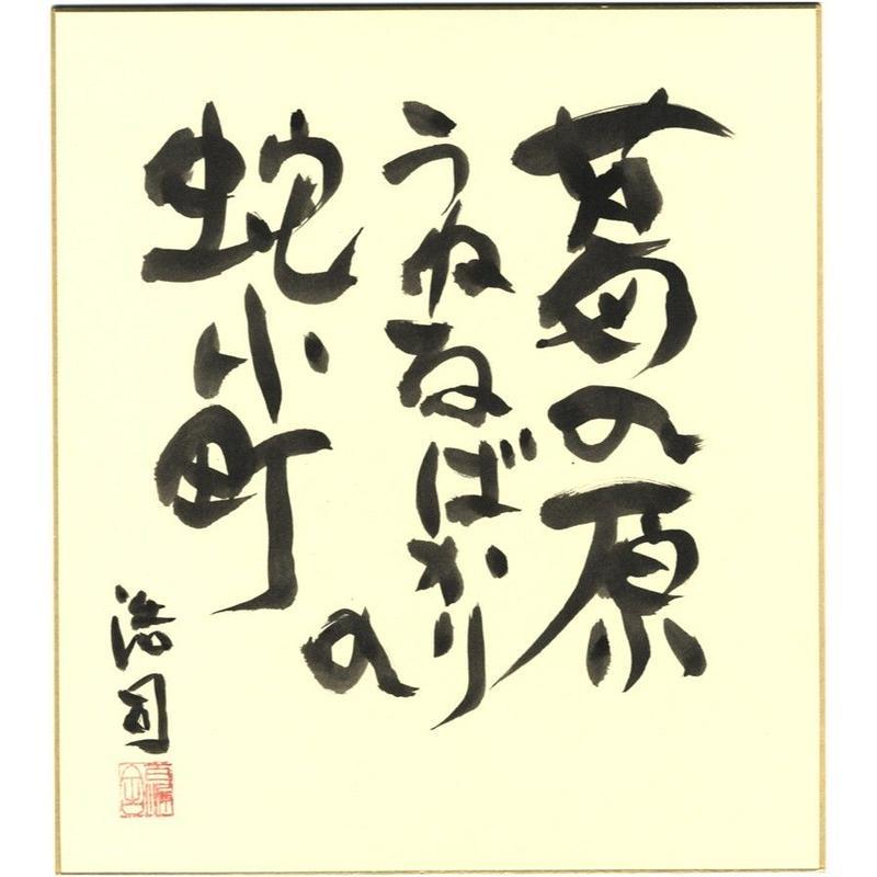 安井浩司 俳句墨書色紙『葛の原うねるばかりの蛇小町』(『空なる芭蕉』)