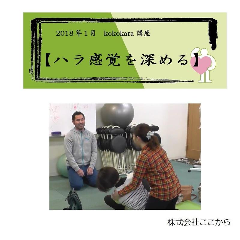 ハラ感覚を深める(2018年1月kokokara講座)