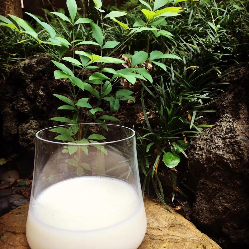 〈定期便は10%OFF〉komeama[こめあま]生米麹甘酒・プレーン2kg
