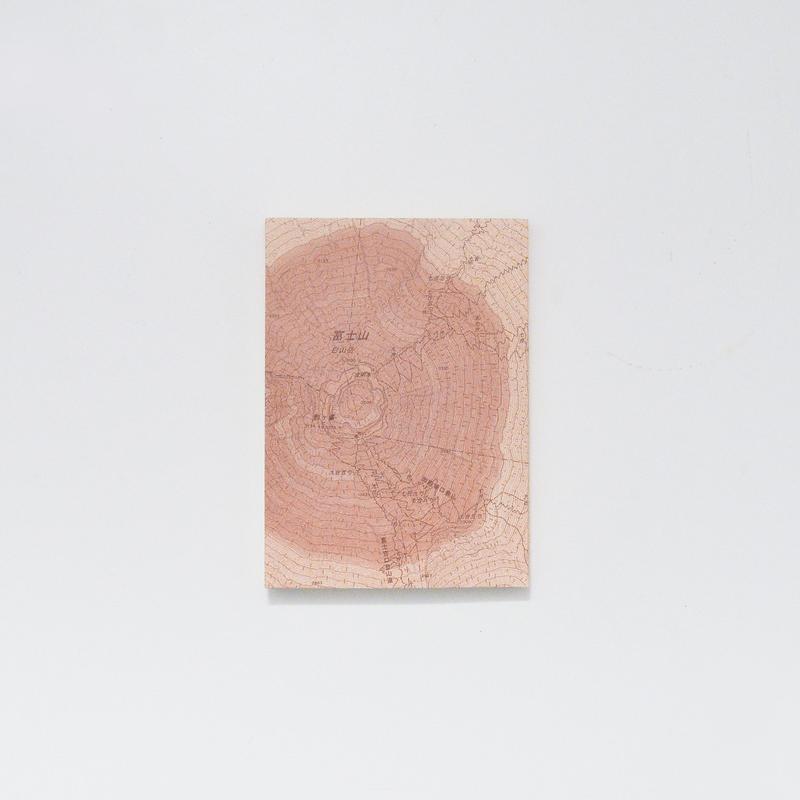 BOOK COVER「年輪する擬態地図」
