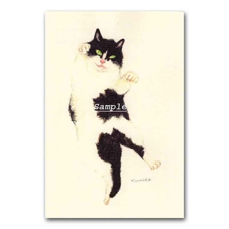 猫ポストカード16
