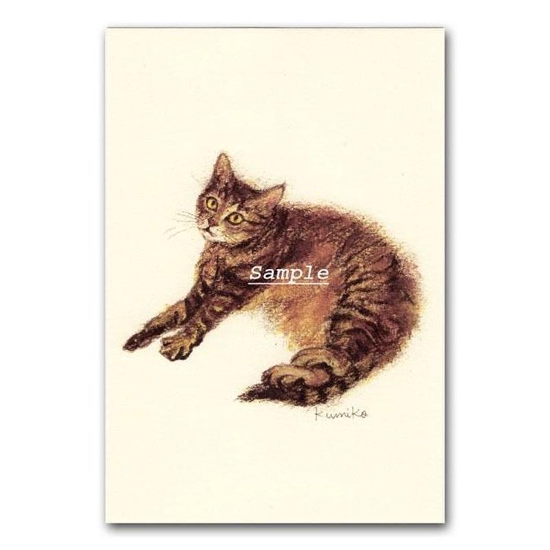 猫ポストカード9